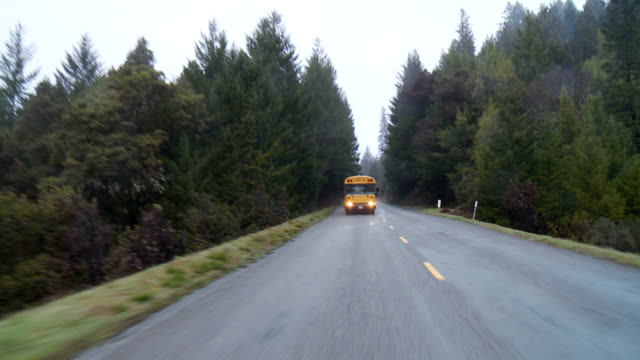school bus - school buses stock videos and b-roll footage