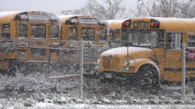 vídeos y material grabado en eventos de stock de escuela autobuses durante la tormenta nieve - autobuses escolares
