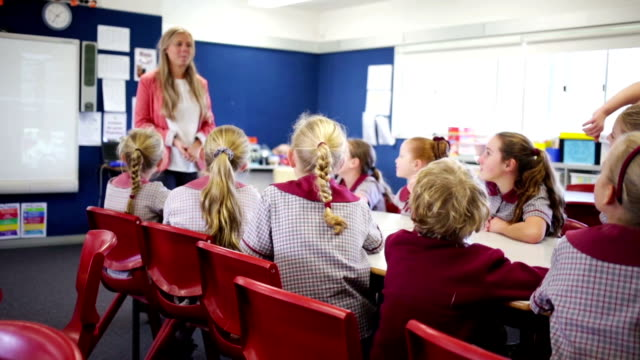 School Children in the Classroom video