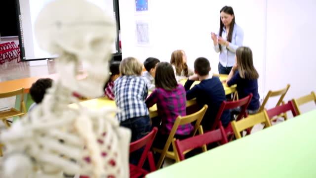 school-klasse - grundschule stock-videos und b-roll-filmmaterial