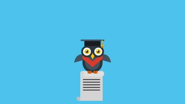 school graduation success - tocco accademico video stock e b–roll
