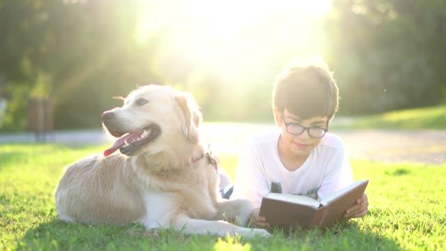 scolaro che legge il libro con il suo cane - bambino cane video stock e b–roll