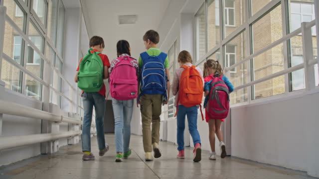 Schoolmates after Classes Rear view of school kids with backpacks walking along corridor school building stock videos & royalty-free footage