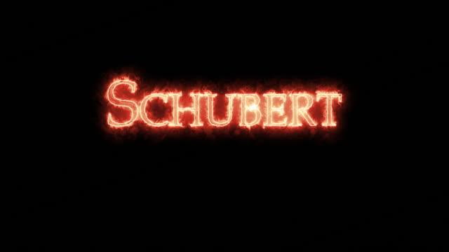 vídeos de stock e filmes b-roll de schubert written with fire. loop - compositor