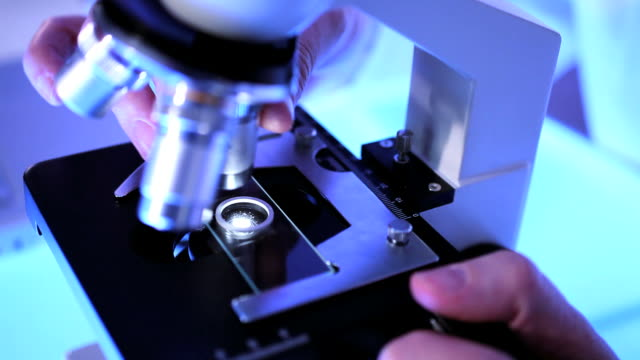 science & research - science research stock videos & royalty-free footage