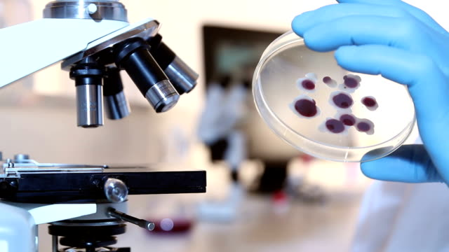 Scientific Research - Examining video