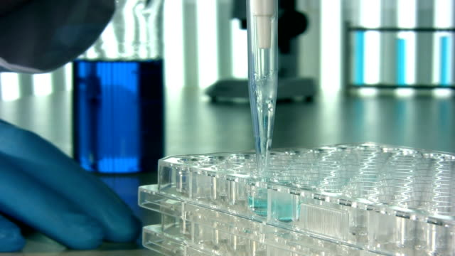 scientific research laboratory - science research stock videos & royalty-free footage