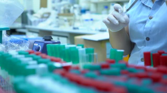 wissenschaftler labor experimentieren und bio - wissenschaftlerin stock-videos und b-roll-filmmaterial