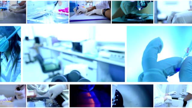 科学者とバイオ lab 実験 - 科学実験室点の映像素材/bロール