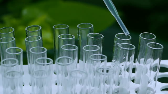 Scientist Collect water samples to lab test video