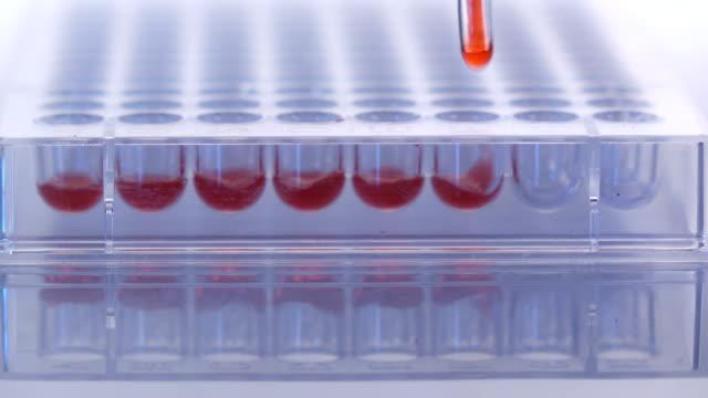 forskare att lämna kemisk lösning för analys i laboratorium - medicinskt stickprov bildbanksvideor och videomaterial från bakom kulisserna