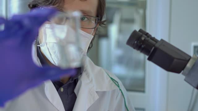 vídeos de stock e filmes b-roll de scientist in a laboratory investigates quality of water or some other liquid - coroa