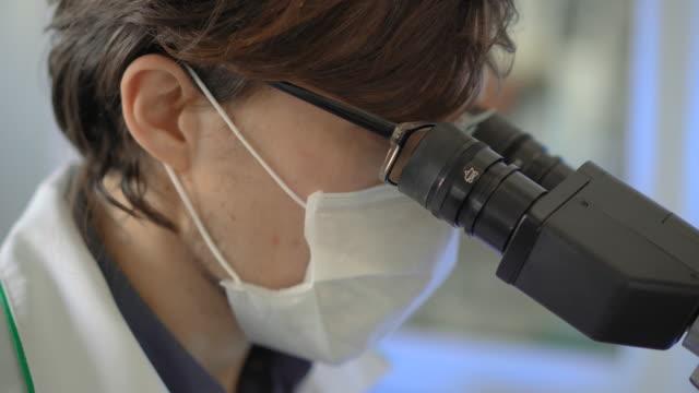 vídeos de stock e filmes b-roll de scientist in a laboratory uses a microscope. closeup shot - coroa
