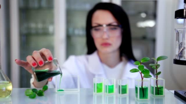 Cientista no laboratório - vídeo