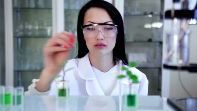 Scientist in the laboratory video