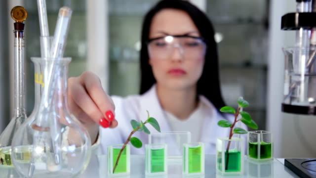 Cientista no laboratório trabalha com os preparativos e protótipos - vídeo