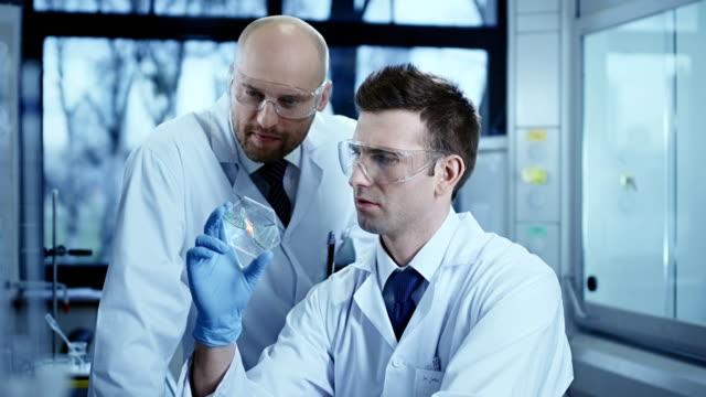 Scientist is analysing DNA structure. video