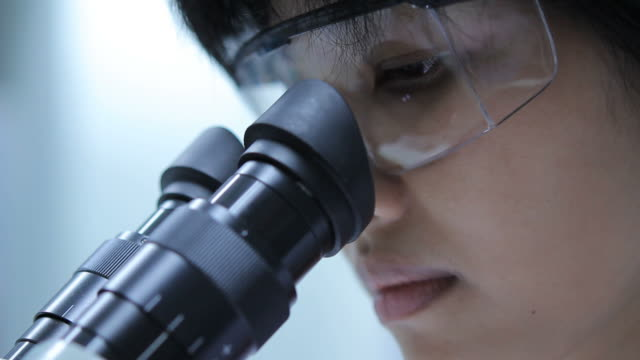 Scientist is using with microscope video