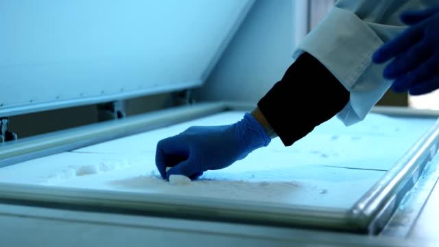 vídeos de stock e filmes b-roll de scientist opening freezer lid in laboratory 4k - congelador