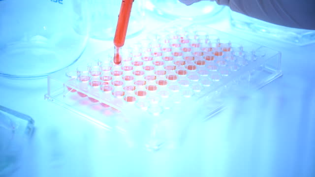 Scientist or doctor testing in laboratory video