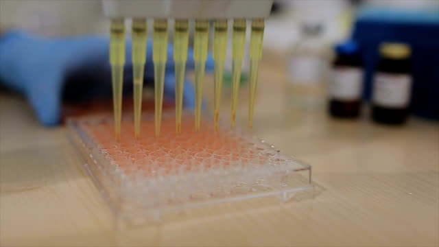 Scientist pipetting liquids for research video