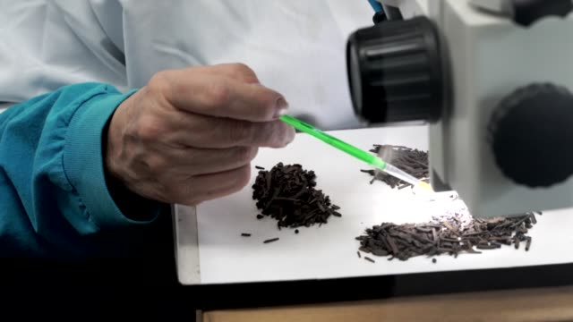 scientist sorting through sediment fossils with microscope - archeologia video stock e b–roll