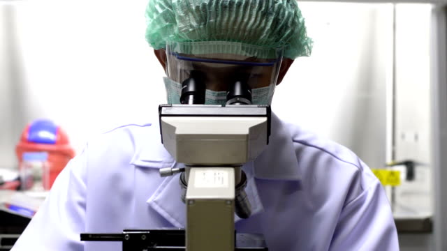 scientist testing in laboratory. HD video video