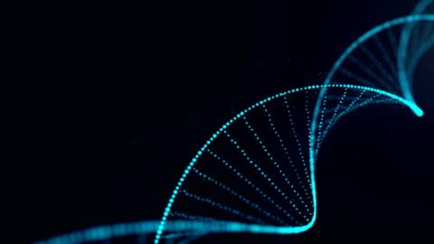 vídeos de stock e filmes b-roll de scientist testing in laboratory.analyte blue dna sequence - biologia