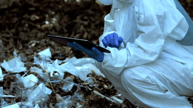 Scientist typing report about plastic dump in woods using tablet, soil pollution