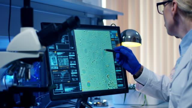 wissenschaftler mit einem mikroskop in einem labor - wissenschaftlerin stock-videos und b-roll-filmmaterial