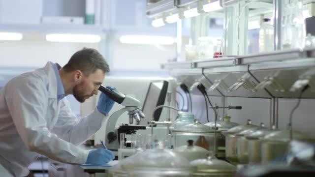 ラボで顕微鏡を使用する科学者 - 研究者点の映像素材/bロール