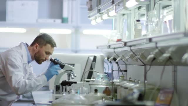 vídeos y material grabado en eventos de stock de científico usando el microscopio - bacteria