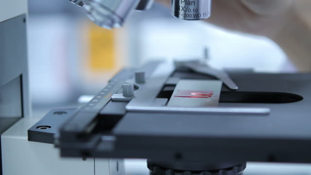 Scientist using microscope video