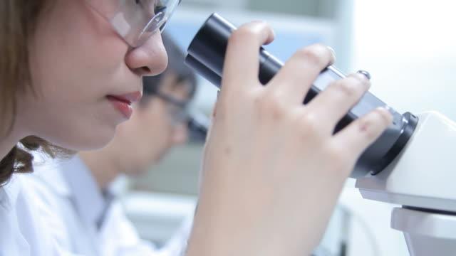 hd: wissenschaftler mit mikroskop - wissenschaftlerin stock-videos und b-roll-filmmaterial