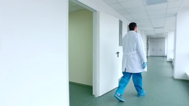 Scientist walking lab corridor. Back view of doctor walking hospital corridor video