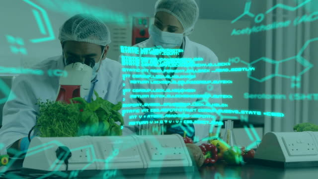 Scientists at work in a lab using microscope with glowing greem text and data Animation of two scientists at work in a laboratory, one using a microscope and teh other taking notes, seen waist, while glowing blue data and diagrams move in the foreground physiology stock videos & royalty-free footage