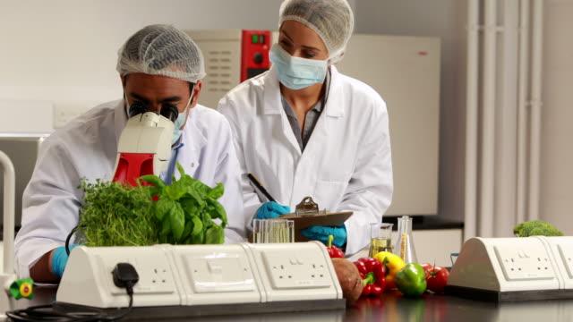 Wissenschaftler, die Experimente auf Speisen zusammen – Video