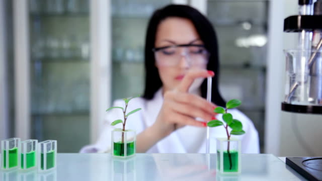 Scientist's test in the laboratory video