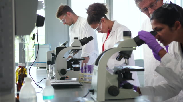 Scientists working in a laboratory and using microscopes Scientists working in a laboratory and using microscopes medical research stock videos & royalty-free footage