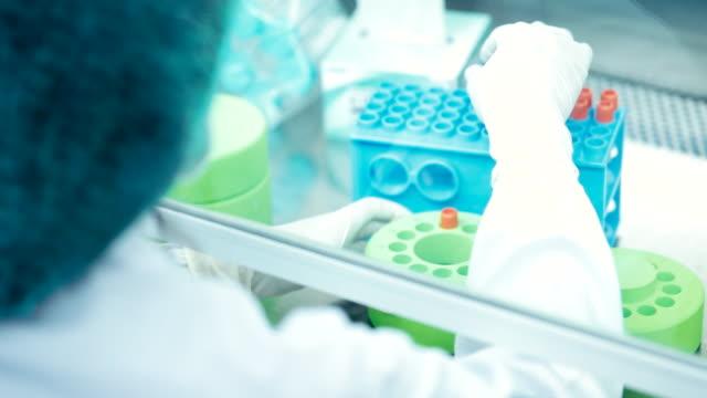 vídeos y material grabado en eventos de stock de los científicos que trabajan en el laboratorio, concepto de ciencia y tecnología, cámara lenta - investigación genética