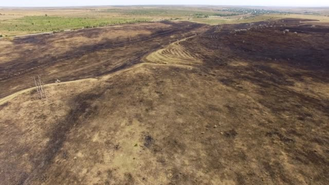 AERIAL: Scorched earth in field after fire Rural landscape with scorched earth in field after fire, aerial video, drone point of view dirt stock videos & royalty-free footage
