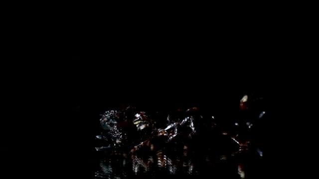 Skorpion kriecht im Dunkeln an den Rand des Spiegels – Video