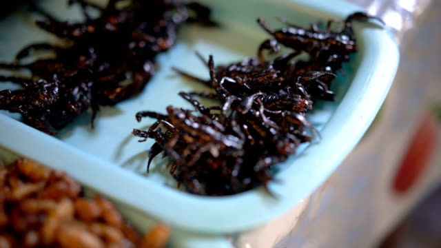 Scorpion fried, worms and grasshoppers snack street food in Thailand. video