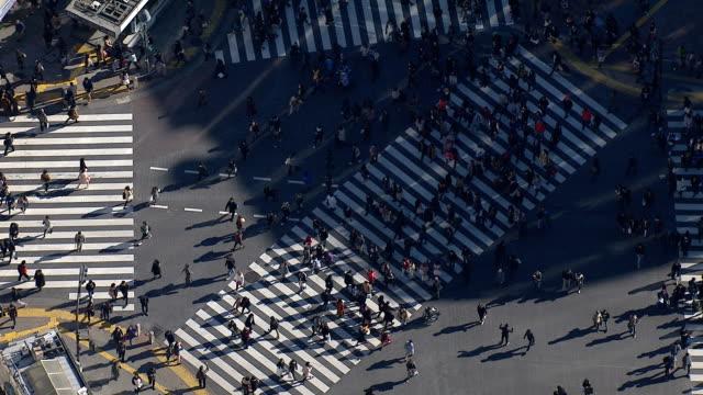 スクランブル交差点 - 交差点点の映像素材/bロール