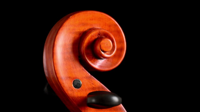 Scroll of violin or viola with pegs turning at black background video