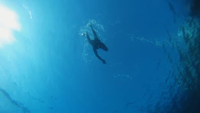 hd замедленная съемка: scuba diver приближаться камеру - дайвинг стоковые видео и кадры b-roll