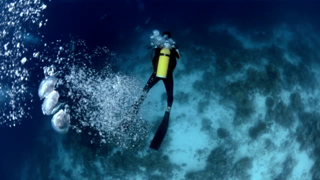 Scuba Diver Scuba diver descending in the sea and releasing bubbles from his aqualung. aqualung diving equipment stock videos & royalty-free footage