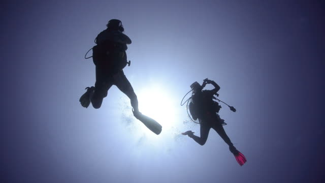Scuba divers in silhouette. Silhouette view of two adult scuba divers. Divers exit frame left. scuba diving stock videos & royalty-free footage