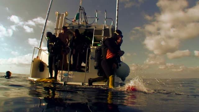 scubadiver sprünge auf boot auf dem wasser - sporttauchen stock-videos und b-roll-filmmaterial