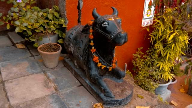 skulptur av en helig ko i svart färg med ett halsband av apelsin blommor - india statue bildbanksvideor och videomaterial från bakom kulisserna